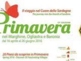 "Special call per ""Radio Sardegna"": II0RSB"