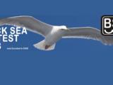 Black Sea Cup International Contest